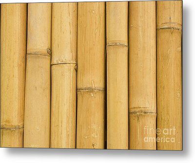 Closed Up Bamboo Background Metal Print