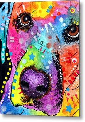 Closeup Labrador Metal Print