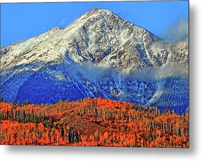Metal Print featuring the photograph Closing In On Fall by Scott Mahon
