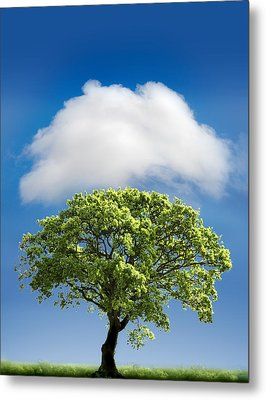 Cloud Cover Metal Print by Mal Bray