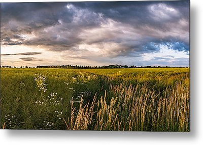 Metal Print featuring the photograph Clouds Over The Fields by Dmytro Korol