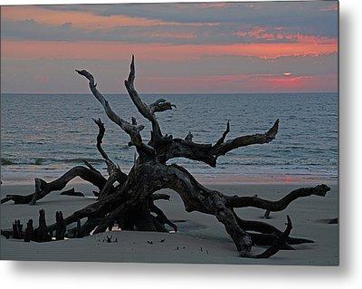 Cloudy Sunrise On Jekyll Island's Driftwood Beach Metal Print by Bruce Gourley