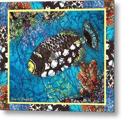 Clown Triggerfish-bordered Metal Print by Sue Duda