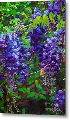 Metal Print featuring the photograph Clusters Of Wisteria by Donna Bentley