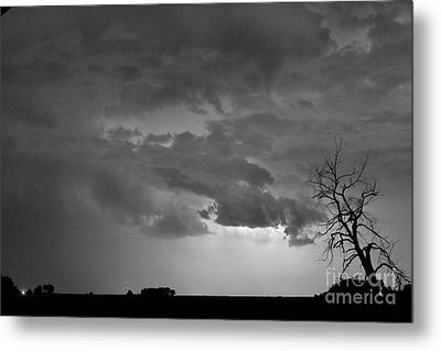 Co Cloud To Cloud Lightning Thunderstorm 27 Bw Metal Print by James BO  Insogna