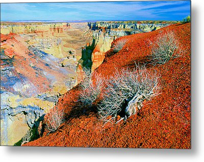 Coal Mine Canyon Metal Print