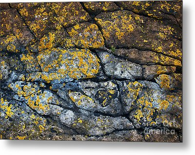 Coastal Colors Metal Print