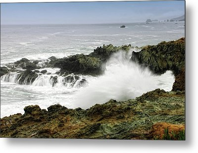Coastal Expressions Metal Print by Donna Blackhall