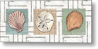 Coastal Shells 1 Metal Print by Debbie DeWitt