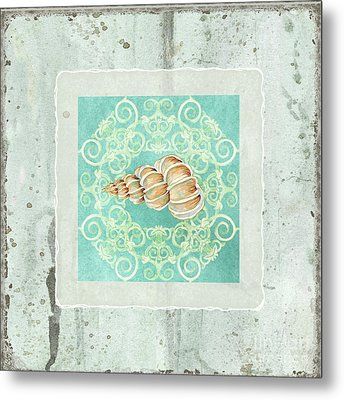 Coastal Trade Winds 4 - Driftwood Precious Wentletop Seashell Metal Print by Audrey Jeanne Roberts