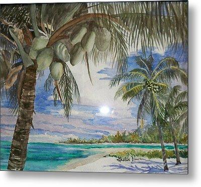Coconut Beach Metal Print by Leslie Duncan