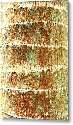 Coconut Palm Bark 2 Metal Print by Brandon Tabiolo - Printscapes