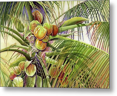 Coconut Palm Metal Print by Lyse Anthony