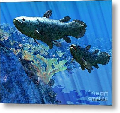 Coelacanth Fish Metal Print by Corey Ford