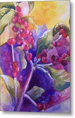 Coffee Berries Metal Print by Sandy Collier