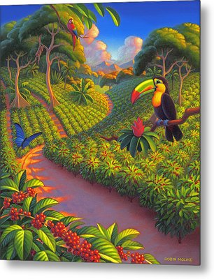 Coffee Plantation Metal Print by Robin Moline