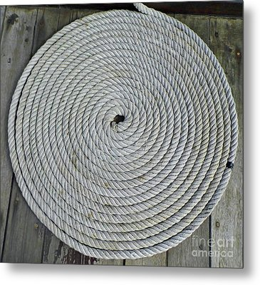Coiled By D Hackett Metal Print