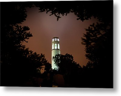 Coit Tower Through The Trees Metal Print