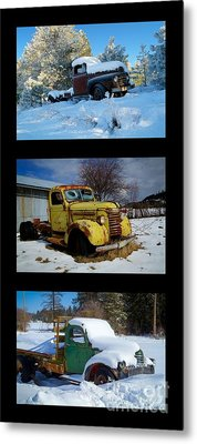 Cold Guys Metal Print by Idaho Scenic Images Linda Lantzy