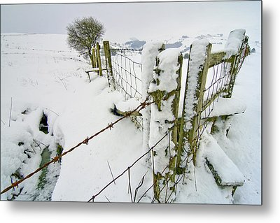 Cold Landscape Metal Print by Richard Outram