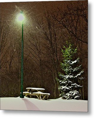 Cold Lunch Metal Print by Robert Pearson