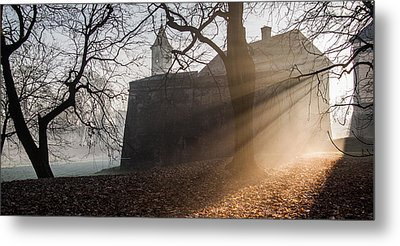 Cold Morning Metal Print by Davorin Mance