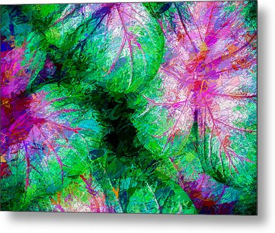 Metal Print featuring the photograph Coleus by Paul Wear