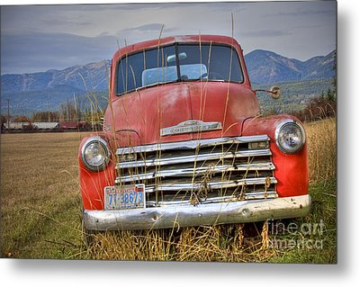 Collecting Weeds Metal Print by Idaho Scenic Images Linda Lantzy