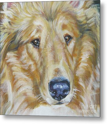Collie Close Up Metal Print by Lee Ann Shepard