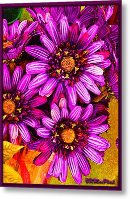 Color Bright Metal Print by Barbara MacPhail