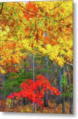 Color Change Of Autumn Leave 2 Metal Print