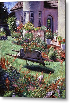 Color Garden  Metal Print by David Lloyd Glover