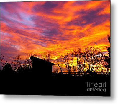Color In The Sky Metal Print