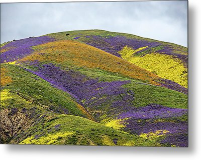 Metal Print featuring the photograph Color Mountain I by Peter Tellone