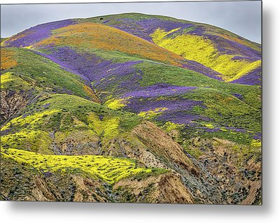 Metal Print featuring the photograph Color Mountain II by Peter Tellone