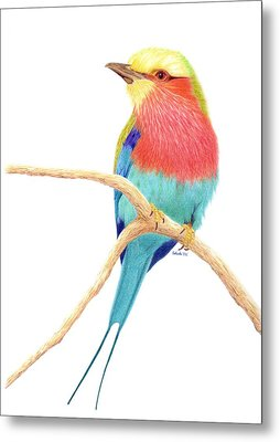Color On A Branch Metal Print