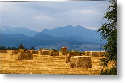 Colorado Agriculture Farming Panorama View Pt 2 Metal Print by James BO  Insogna