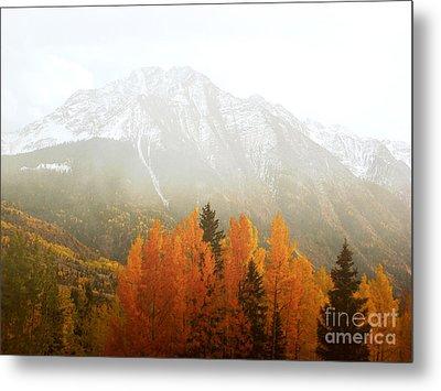 Colorado Aspen Trees Mountain Dreamy Landscape Metal Print by Andrea Hazel Ihlefeld