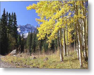 Colorado Dreamin' Metal Print by Eric Glaser