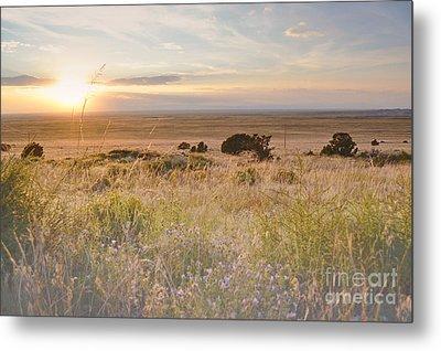 Colorado Field Sunset Landscape Metal Print by Andrea Hazel Ihlefeld