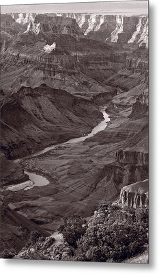 Colorado River At Desert View Grand Canyon Metal Print by Steve Gadomski