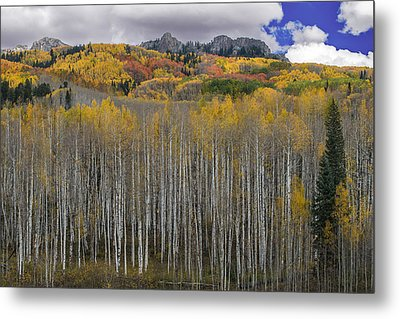 Colorado Splendor Metal Print