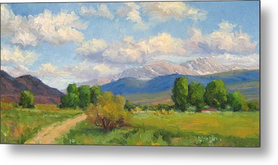 Colorado Summer Metal Print by Bunny Oliver