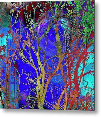Metal Print featuring the photograph Colored Tree Branches by Susan Stone