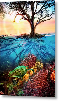 Metal Print featuring the photograph Colorful Coral Seas by Debra and Dave Vanderlaan