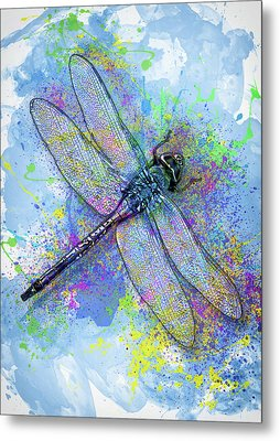 Colorful Dragonfly Metal Print by Jack Zulli