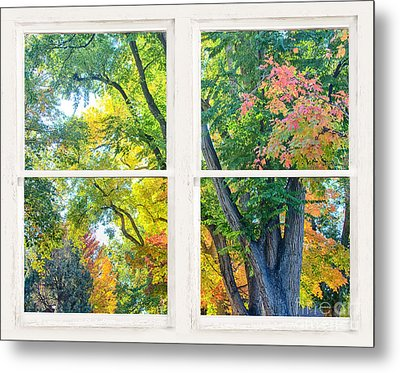 Colorful Forest Rustic Whitewashed Window View Metal Print