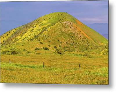 Metal Print featuring the photograph Colorful Hill by Marc Crumpler