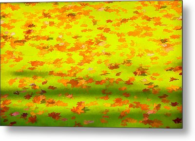 Colorful Leaves On Canal Metal Print by David Letts