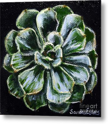 Metal Print featuring the painting Colorful Succulent by Sandra Estes